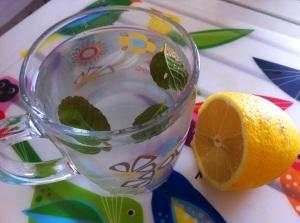 nane limon