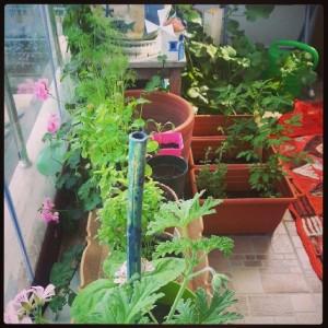 bahçeyeni